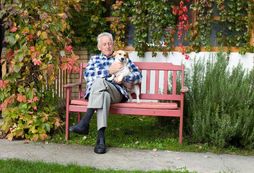 Senior man with dog on park bench